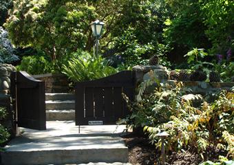 North Beach Garden